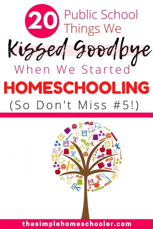 Homeschooling isn't exactly easy, but public school also has its own things that irritate and exhaust me. Check out the 20 things that drove me nuts when my daughter was in public school and how homeschooling has changed and benefited our family now!