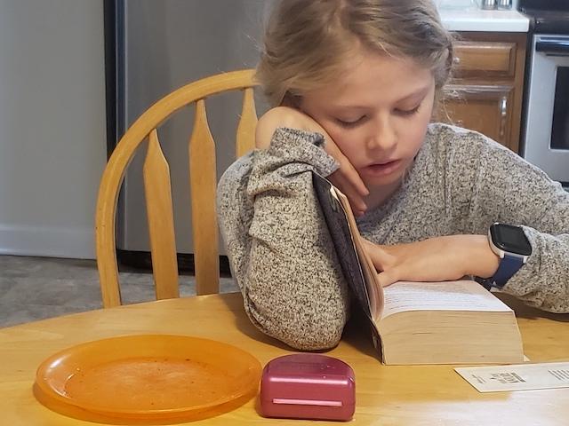 homeschool kid reading