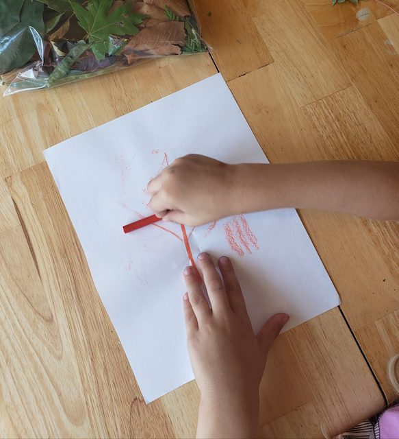 Homeschooler beginning a fall leaf craft with paper and crayons