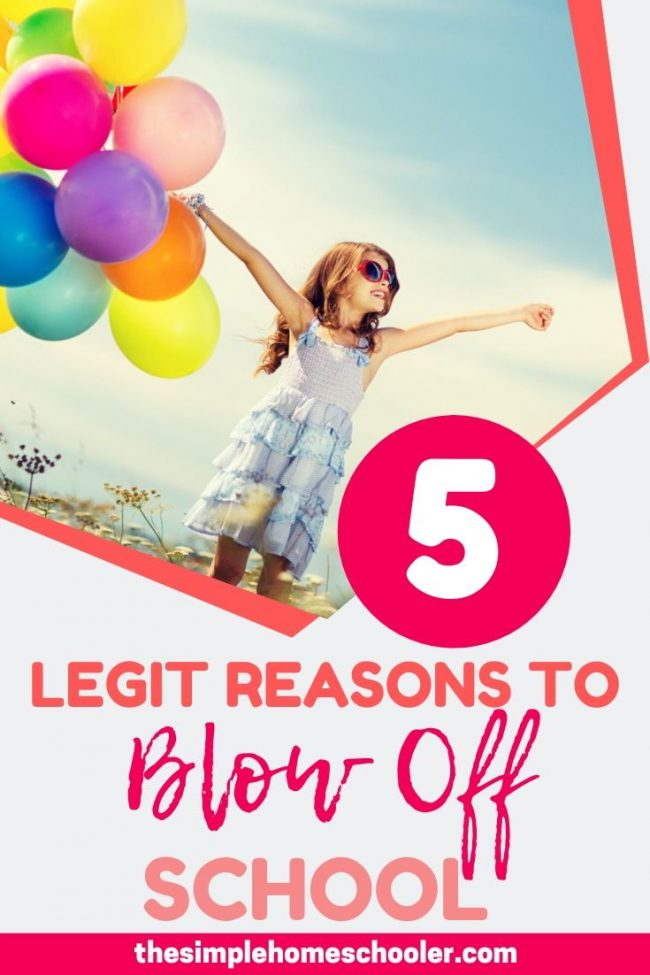 Are you afraid you'll lose all control and go off the rails if you have an unplanned day off of homeschool? My type A personality understands you completely. Check out my top 5 reasons to cancel your homeschool day! I know your kids will be so happy you read this!
