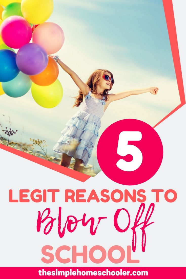 5 Really Good Reasons to Cancel Your Homeschool Day