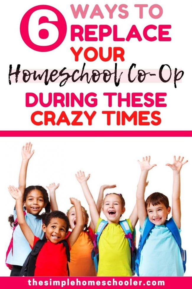 Worried about not having a homeschool co-op this year? Check out these 6 creative online options that will enrich your homeschool with fresh activities, social interaction, fun lessons, and physical activity during this crazy time!