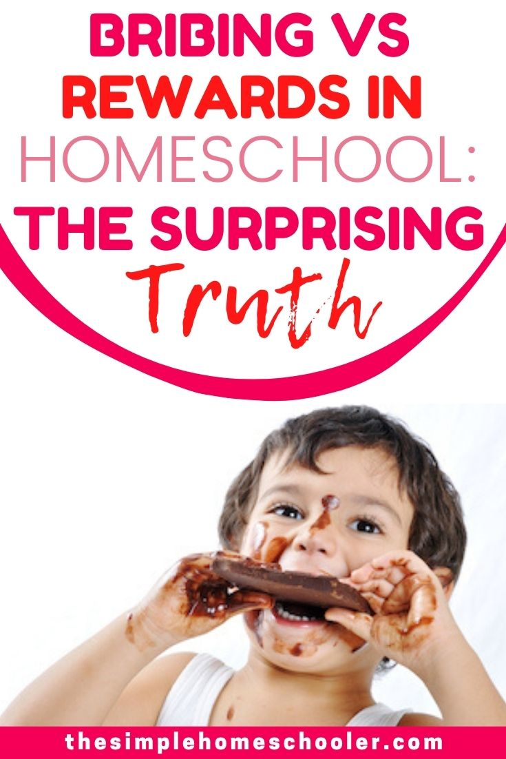 Are you confused about how to motivate your homeschooler? Isn't it wrong to offer bribes or a reward system for things they should just be doing anyway? Shouldn't the love of learning be enough for your kids? I have been homeschooling for going on 4 years, and I have answers for all your questions - and they're going to surprise you! Don't miss this crucial homeschool tip and the free printable that goes with it!